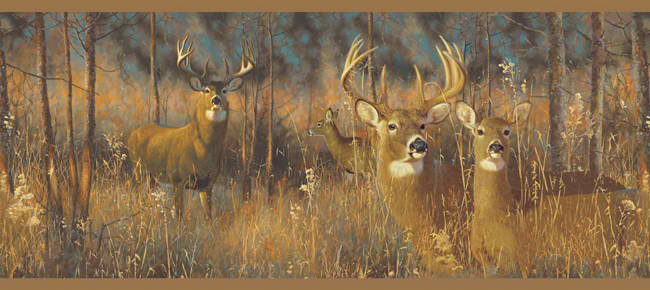 Brown Green WG0346BD White Tail Deer Wallpaper Border   Lodge 650x290