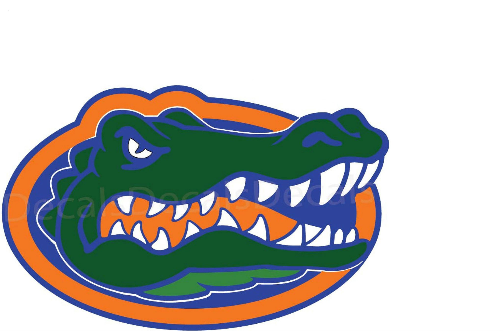 FLORIDA GATORS college football wallpaper background 2048x1348
