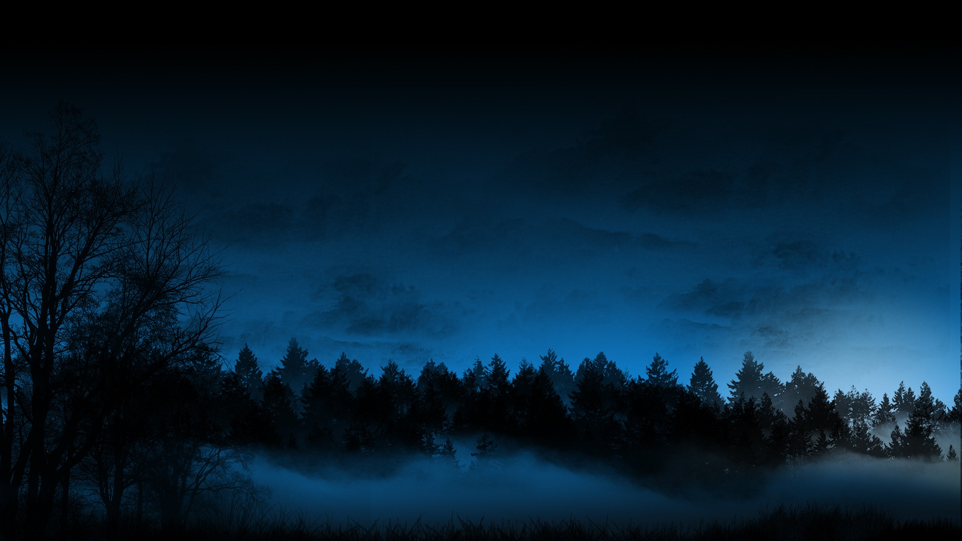Trees Forest Night Fog Mist Blue CG sky wallpaper 1920x1080 46429 1920x1080