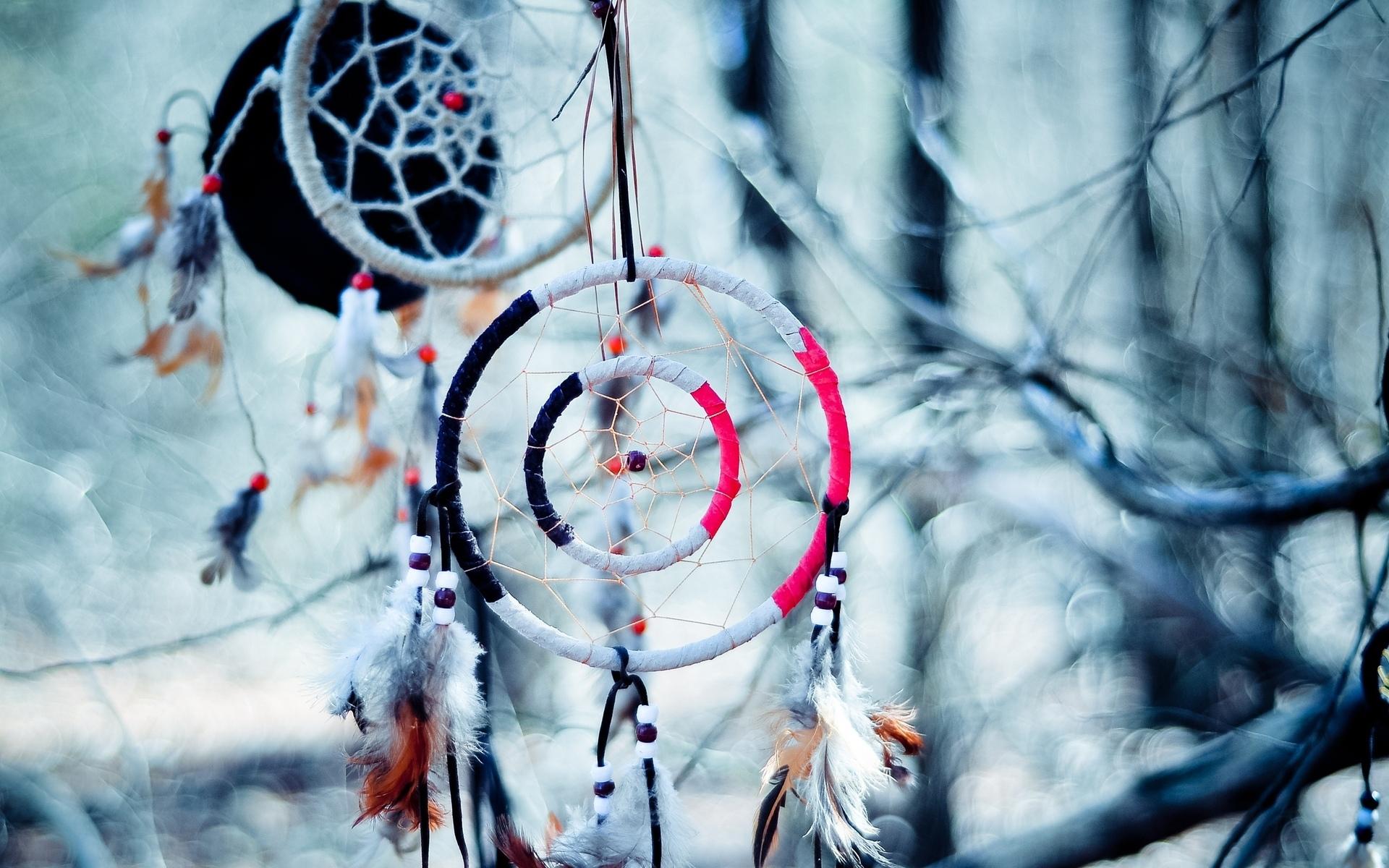 Dream Catcher native american artistic indian trees branch limb 1920x1200