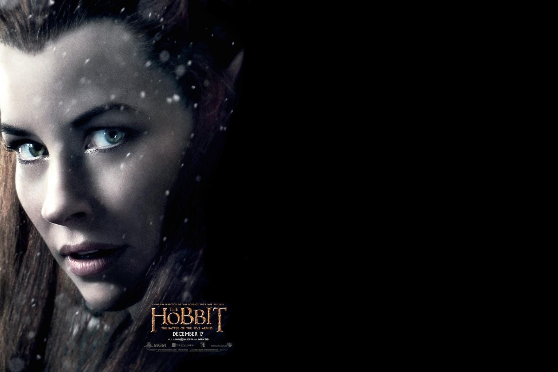 Evangeline Lilly In The Hobbit Battle of The Five Armies Wallpapers 1920x1280