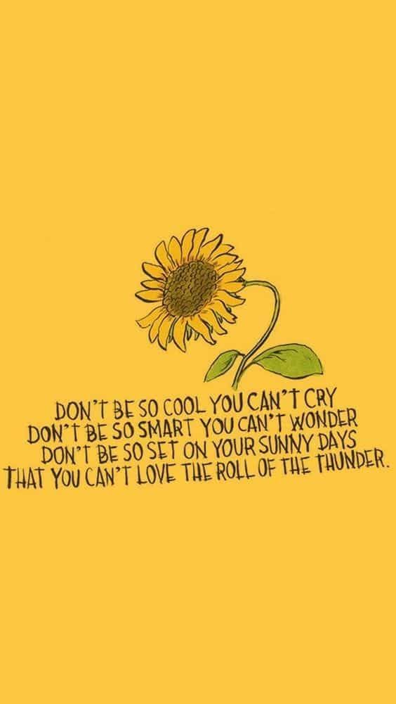 Pin by Laney Bug on words of wisdom Quotes Wallpaper quotes 564x1001