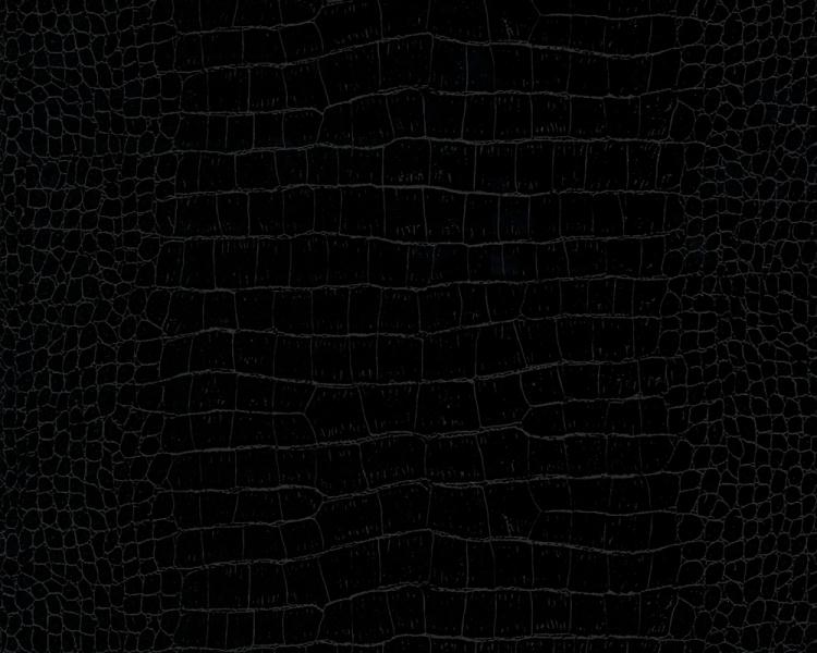 Black Crocodile 750x600