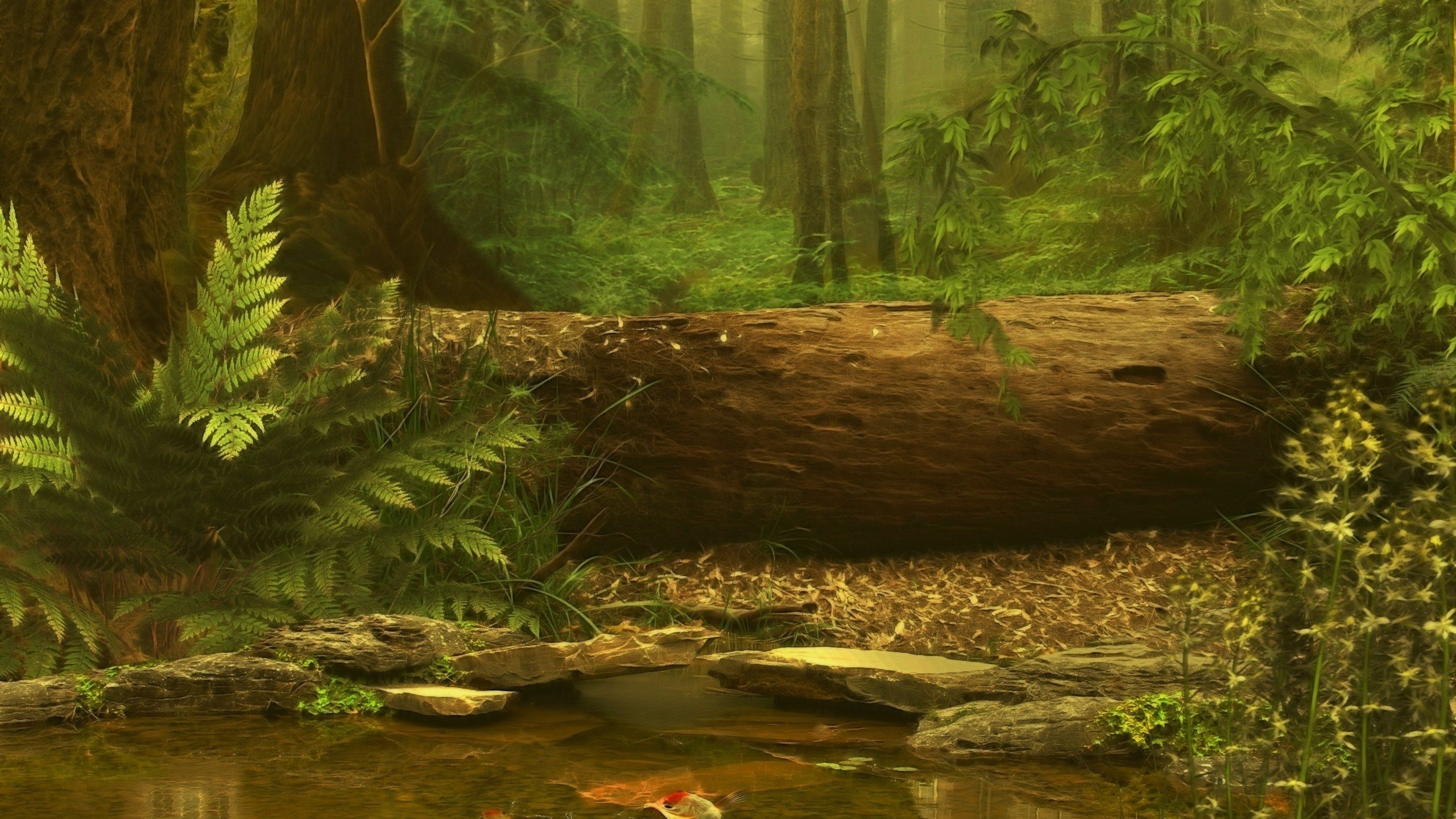 Forest Scene Wallpaper Wallpapersafari