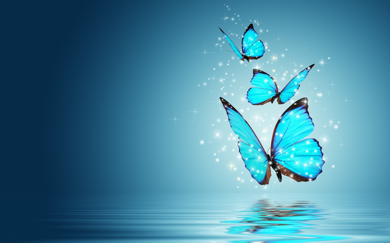Butterflies   2880 x 1800 Retina Display wallpaper 2880x1800