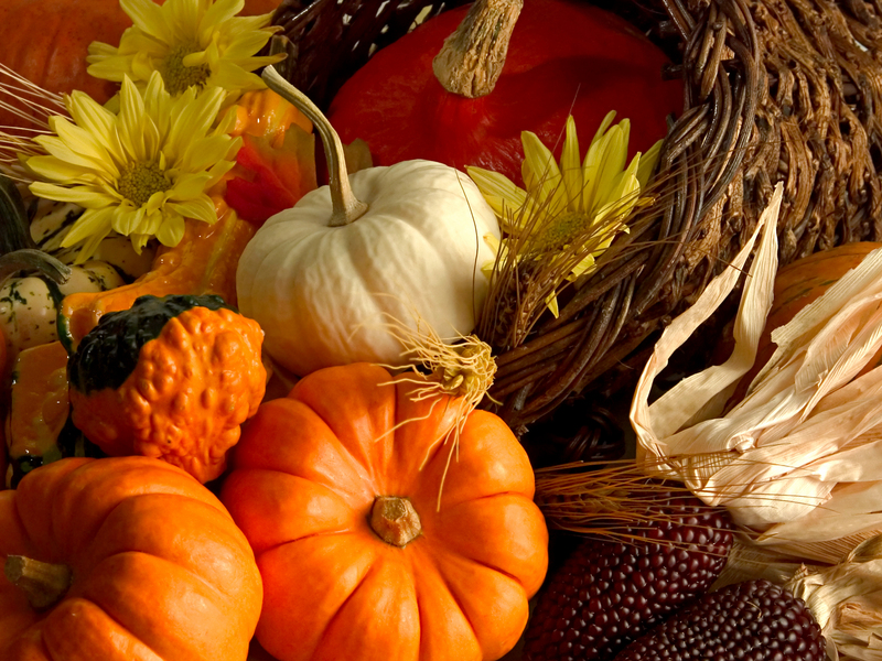 First day of fall is today What is your favorite part of fall 800x600