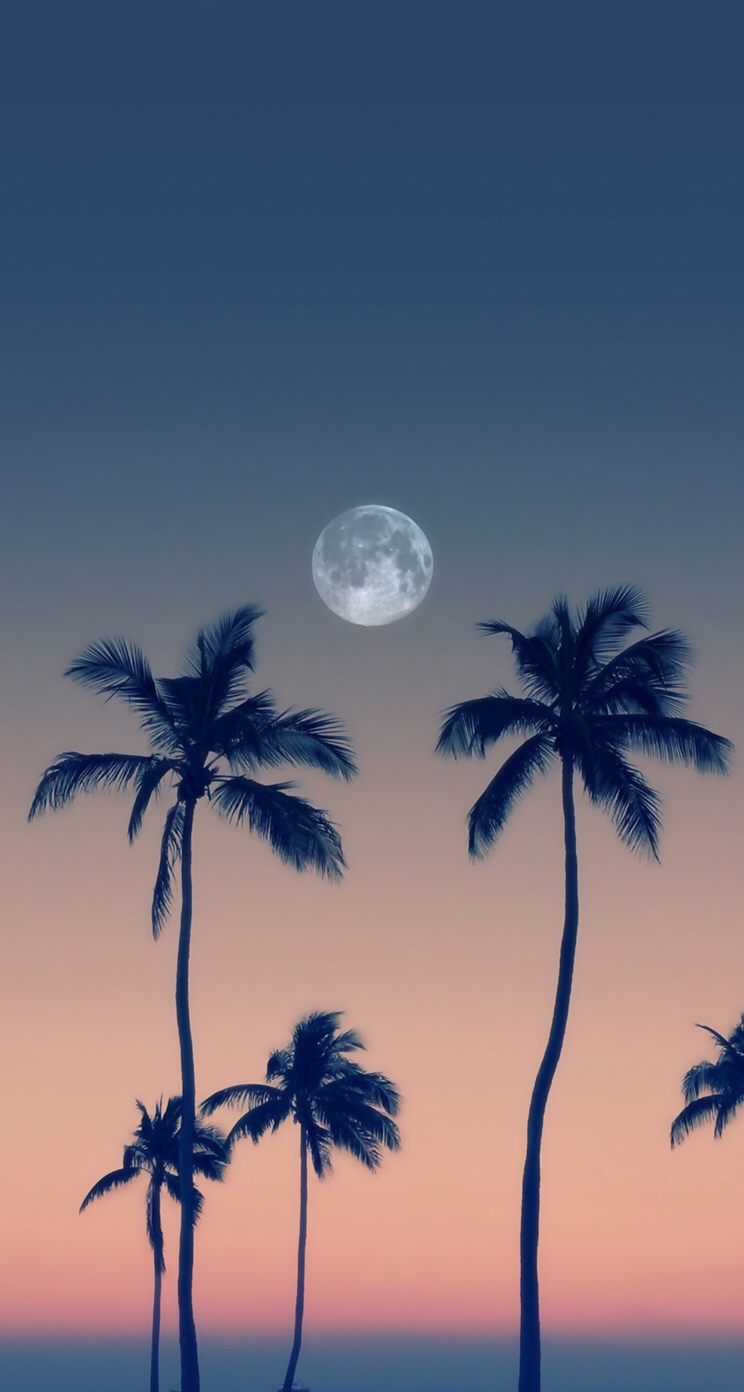 Moon wallpaper backgrounds Backgrounds in 2019 Whatsapp 744x1392
