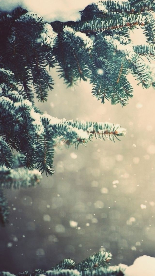Rustic Winter Iphone Wallpaper