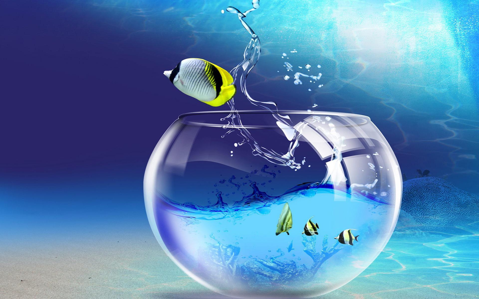 3D Wallpaper Fish Aquarium ImageBankbiz 1920x1200
