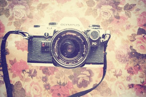 antique beautiful camera cute lovely old olympus photography 500x333