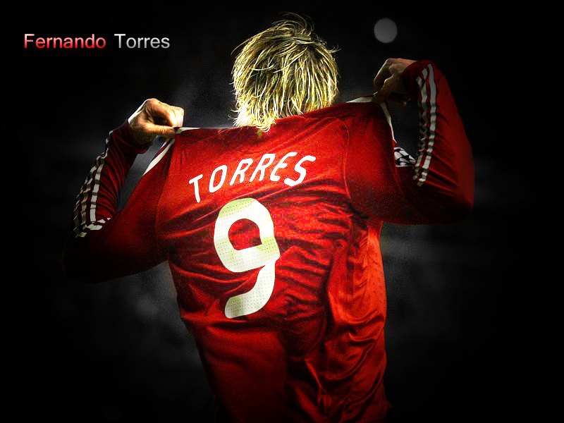 torres hd wallpaper torres hd wallpaper torres hd wallpaper torres hd 800x600