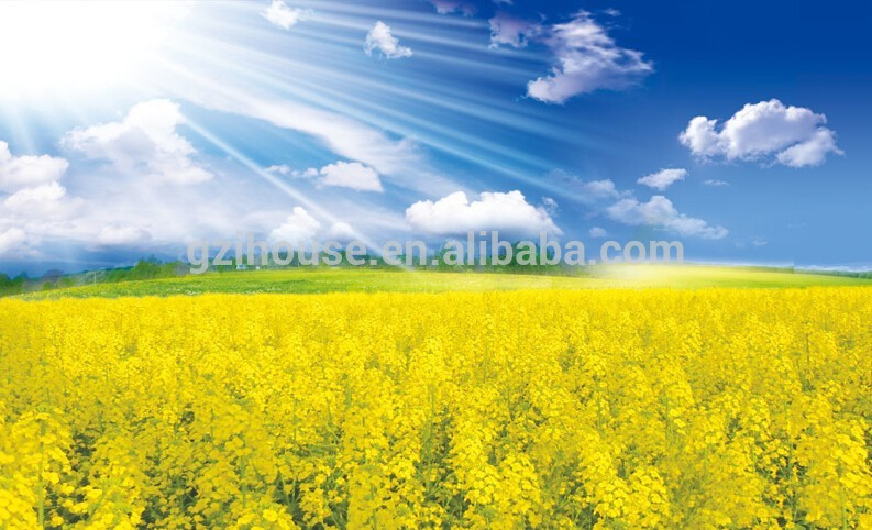 Scenery Flower Wallpaper Wall Mural   Buy WallpaperWallpaper 793x482