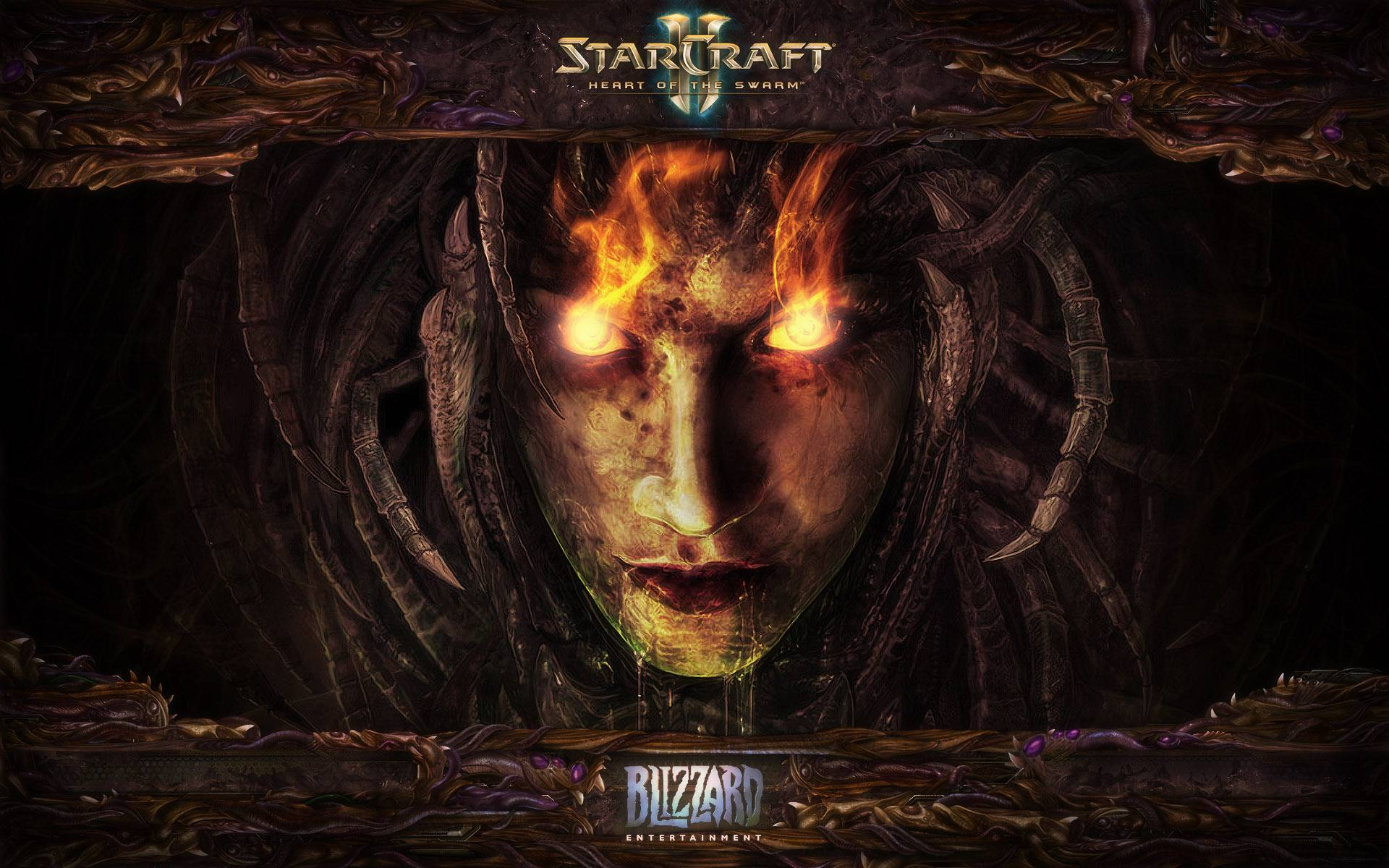 StarCraft II Heart of the Swarm HD Wallpapers and Background 1920x1200