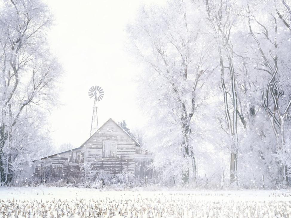 Download Rain And Snow Animated Wallpaper DesktopAnimatedcom 974x730