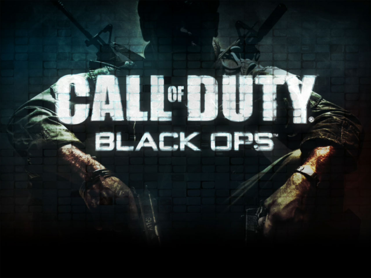 free wallpapers 2 2013 Photoshoot Black Ops Black Ops hd 2013 2 1280x960