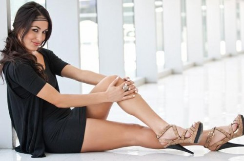 brie bella wallpapers brie bella wallpapers brie bella wallpapers brie 500x331