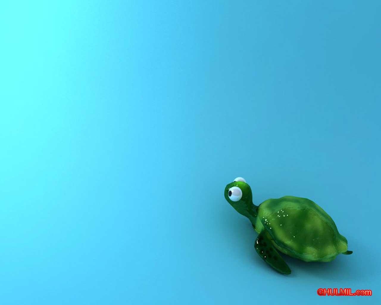 Cute Turtle Wallpaper Desktop Backgroung E Entertainment 1280x1024