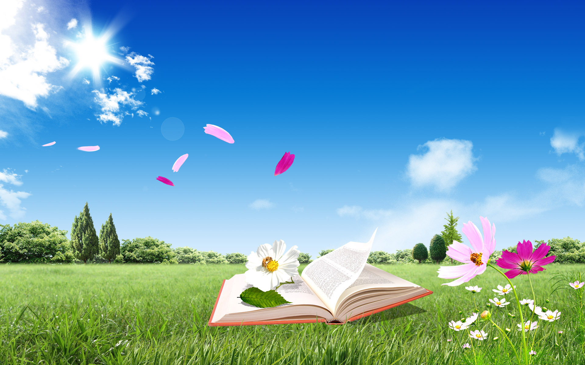 Open Book Background Wallpaper 2751 open book on grass 1920x1200