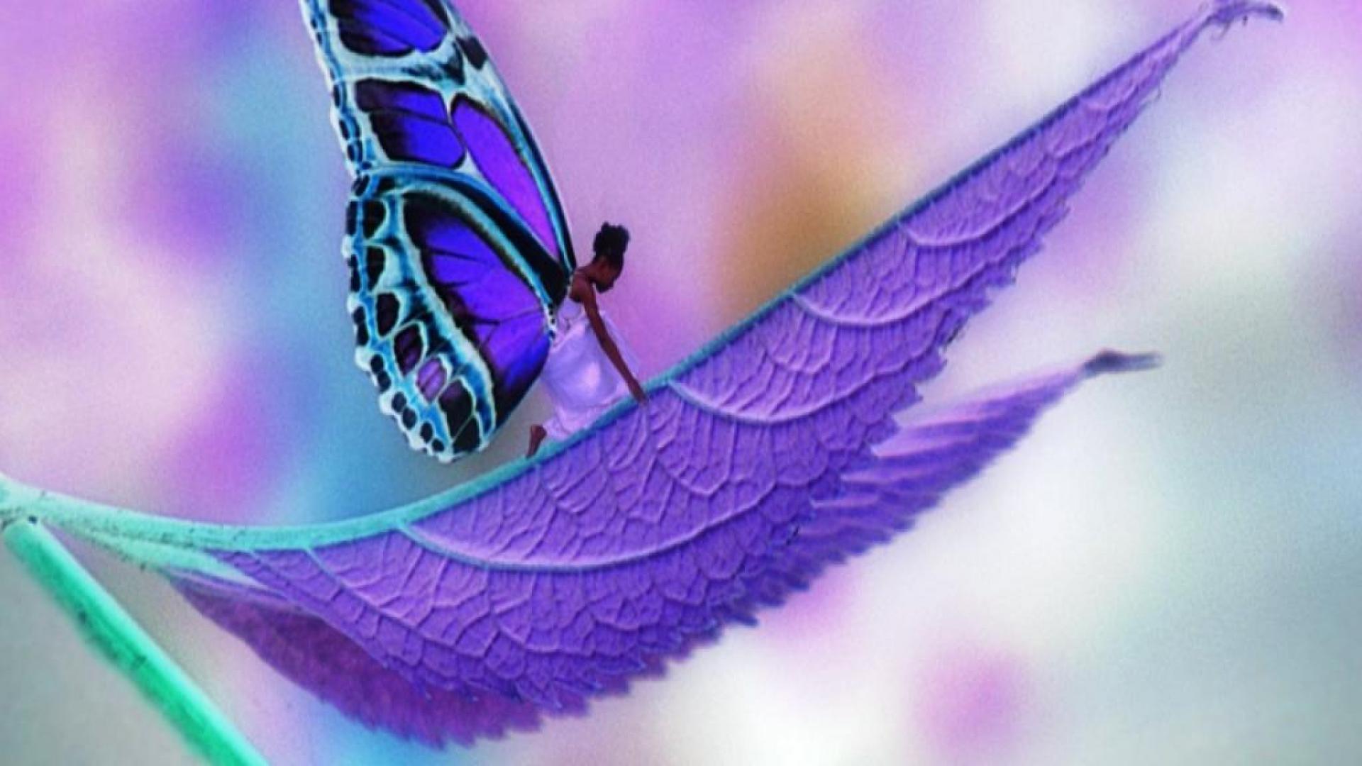 69 Desktop Backgrounds Butterflies On Wallpapersafari