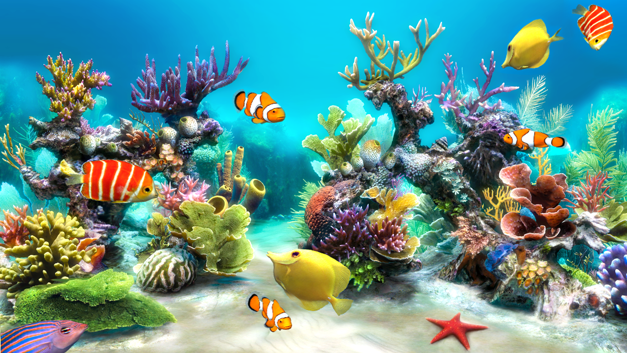 Sim Aquarium Live Wallpaper Android Apps auf Google Play 1280x720