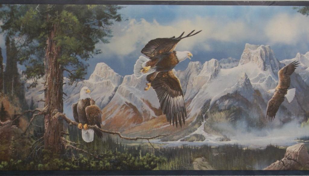 EAGLES NATURE WALLPAPER BORDER   A14C11   EP80173 1024x584