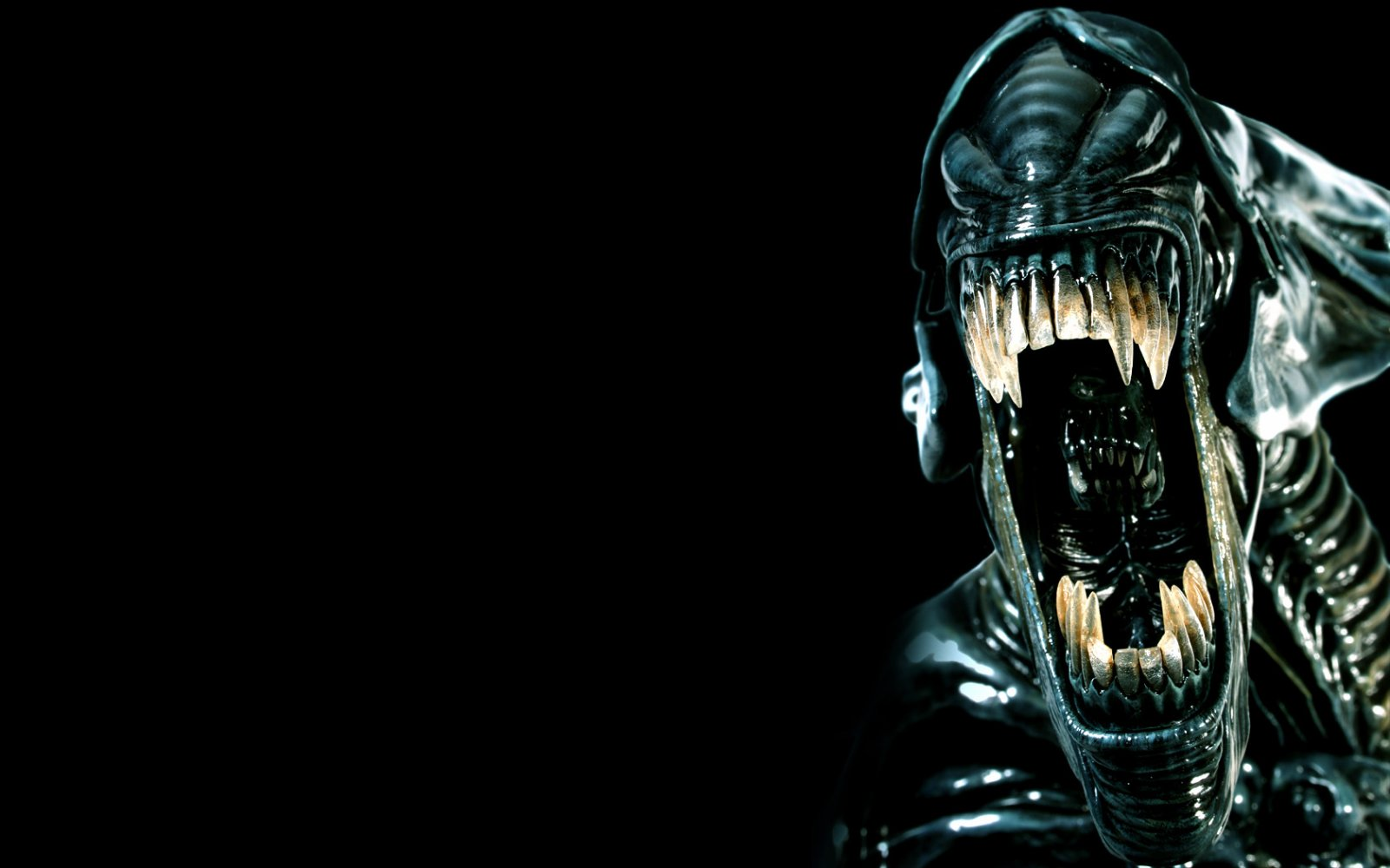 Aliens Wallpaper HD Wallpapers Aliens Wallpapers 63jpg 1600x1000