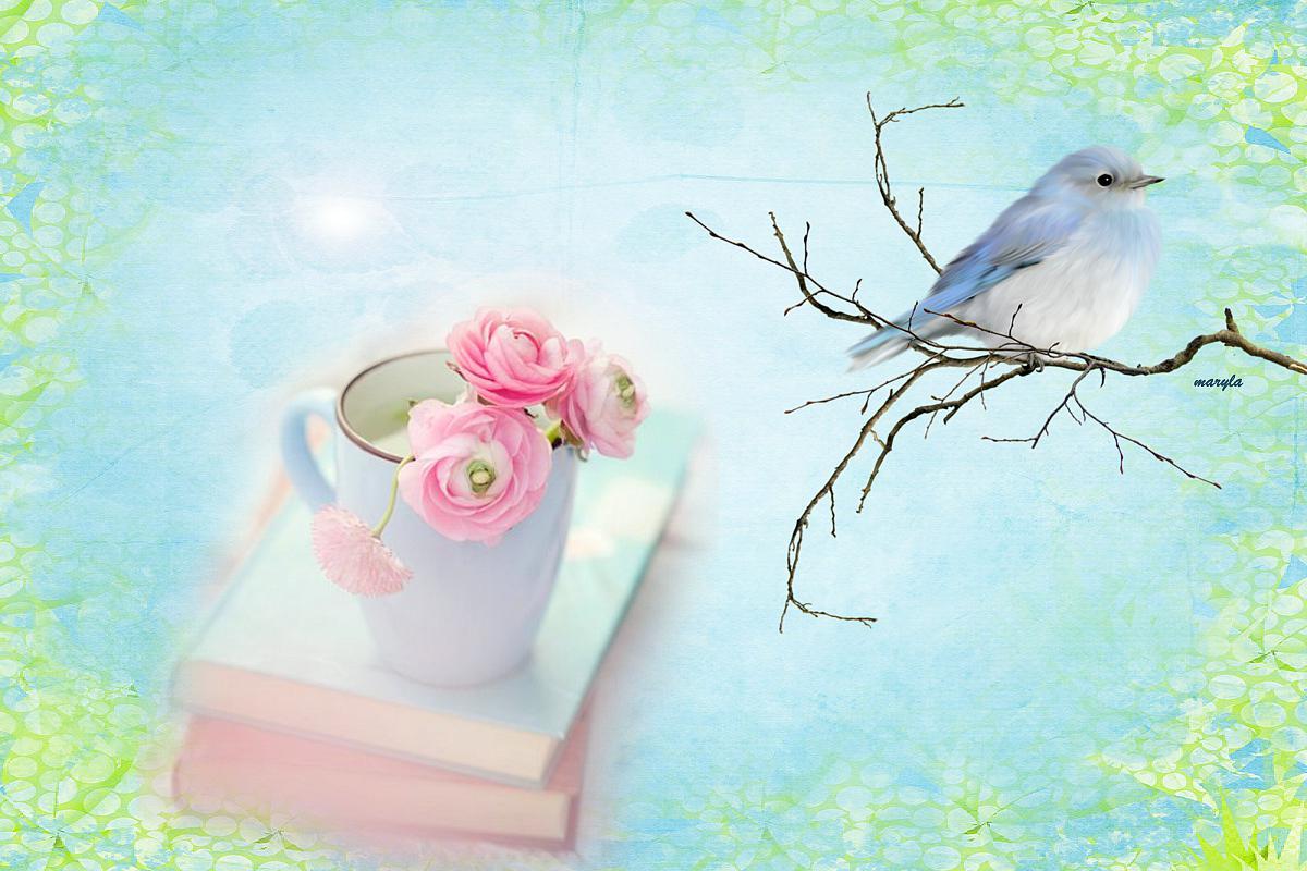 BLUE BIRD WALLPAPER   136017   HD Wallpapers   [WallpapersInHQcom] 1200x800