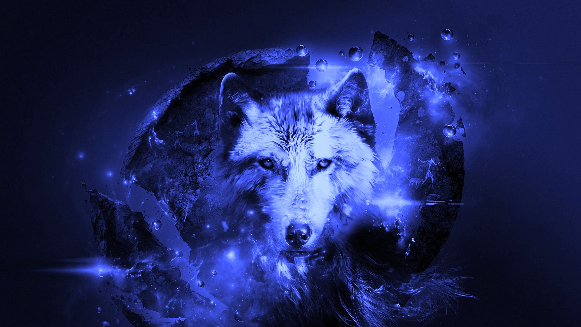 Best Cool Wolf Wallpaper Hd With High resolution Pixel   Cool Wolf 1920x1080