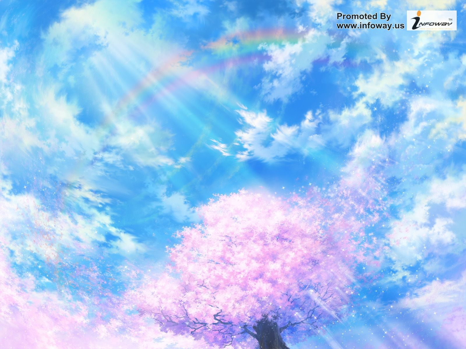 painting wallpaper sakura tree flower spring paint clouds sky 1600x1200