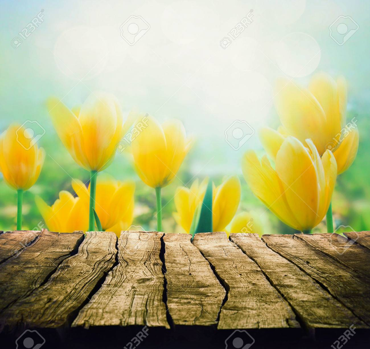 Easter Background With Tabletop Spring Flowers Background Wood 1300x1224