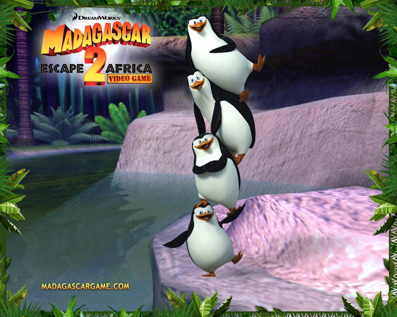 Free download Madagascar Escape 2 Africa Wallpaper Penguin