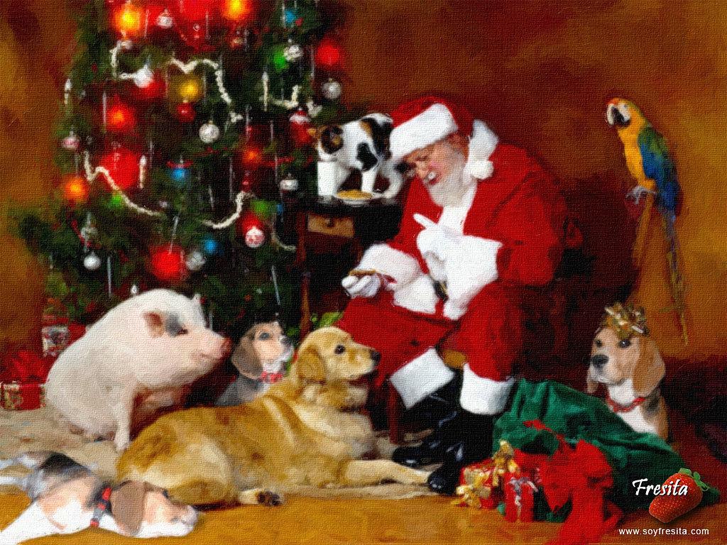 Christmas Dogs   Christmas Wallpaper 13861570 1024x768