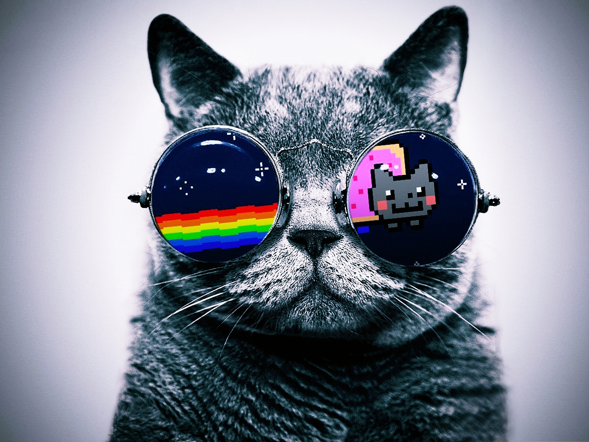 Animals   Cats Cat with glasses Hello Kitty 043898 jpg 1920x1440