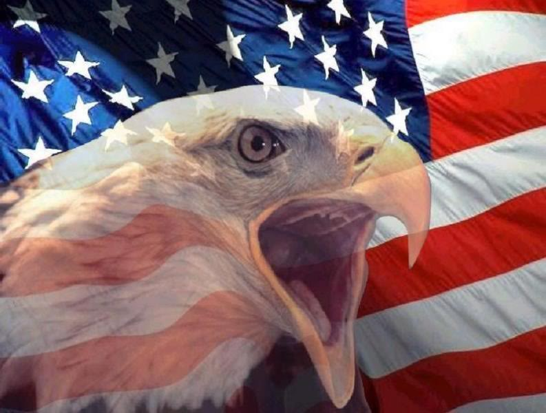 Artistic American Flag Pictures Interesting Pictures 793x600