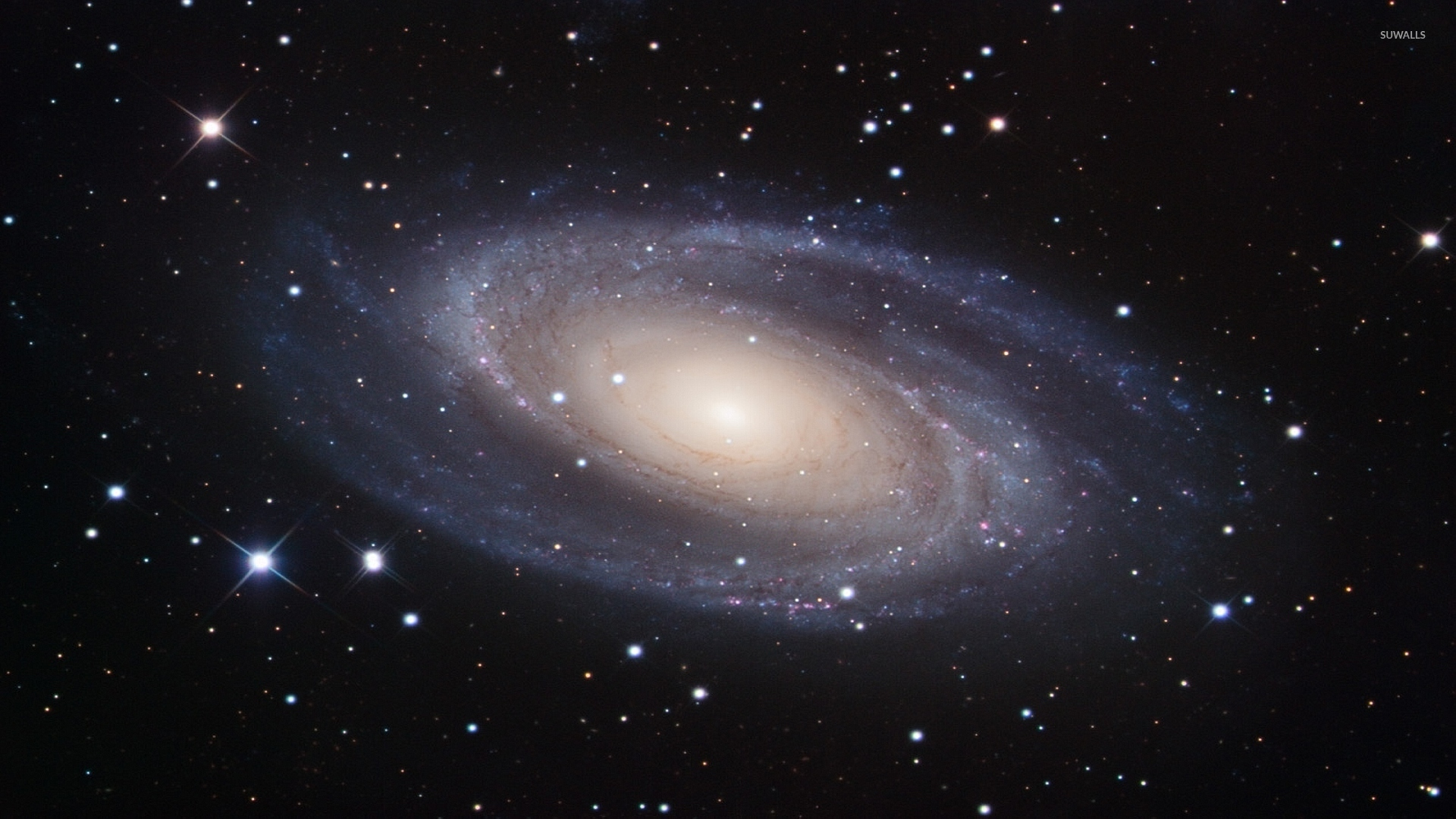 Messier 81 Spiral Galaxy wallpaper   Space wallpapers   1685 1920x1080