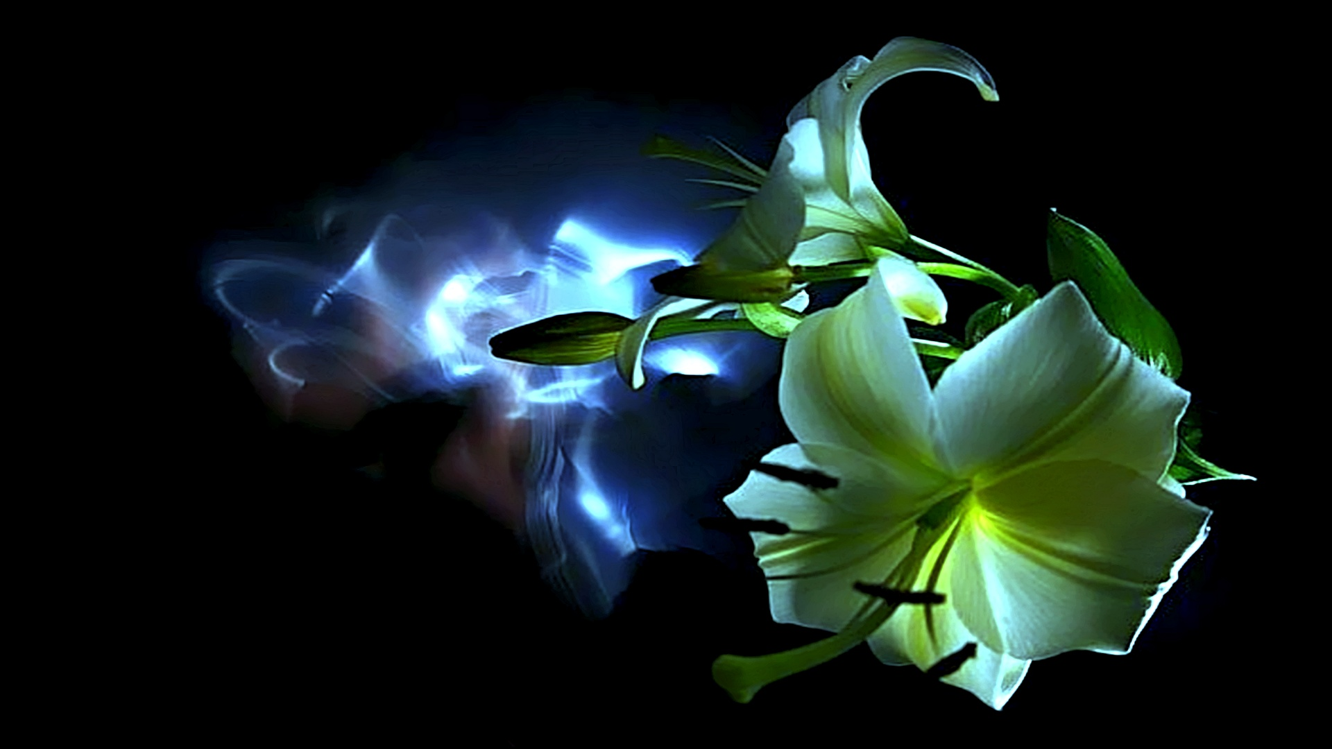 abstract neon flower hd wallpaper background Car Tuning 1920x1080
