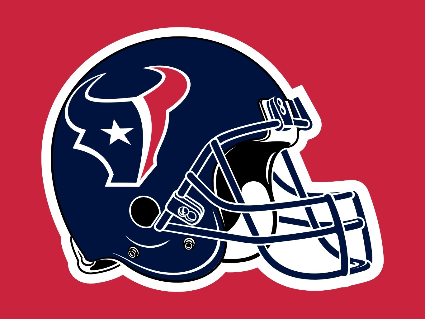 Houston Texans Helmet 1365x1024