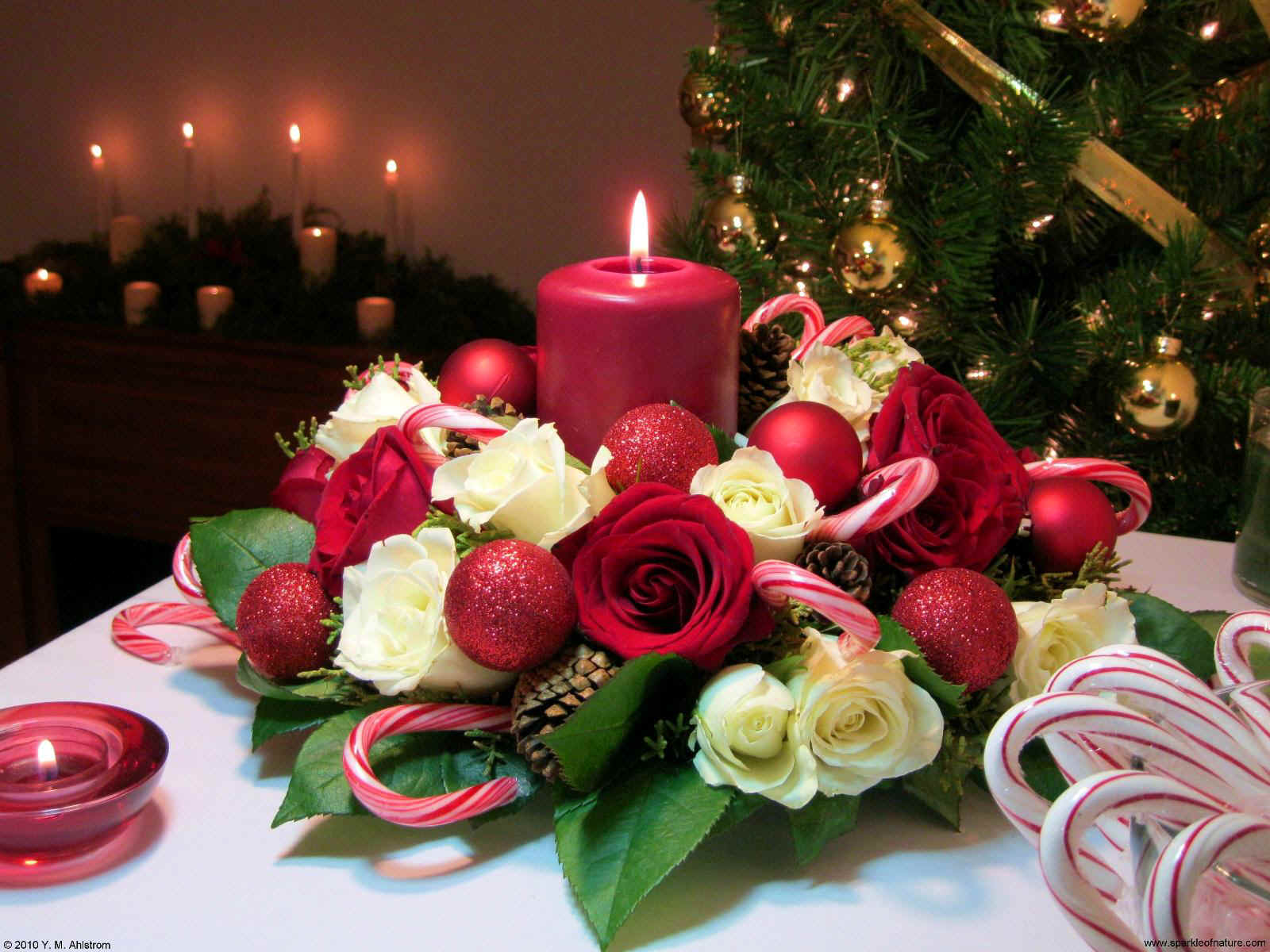 Wallpapers Christmas Candle Wallpapers   Download Christmas Candle 1600x1200