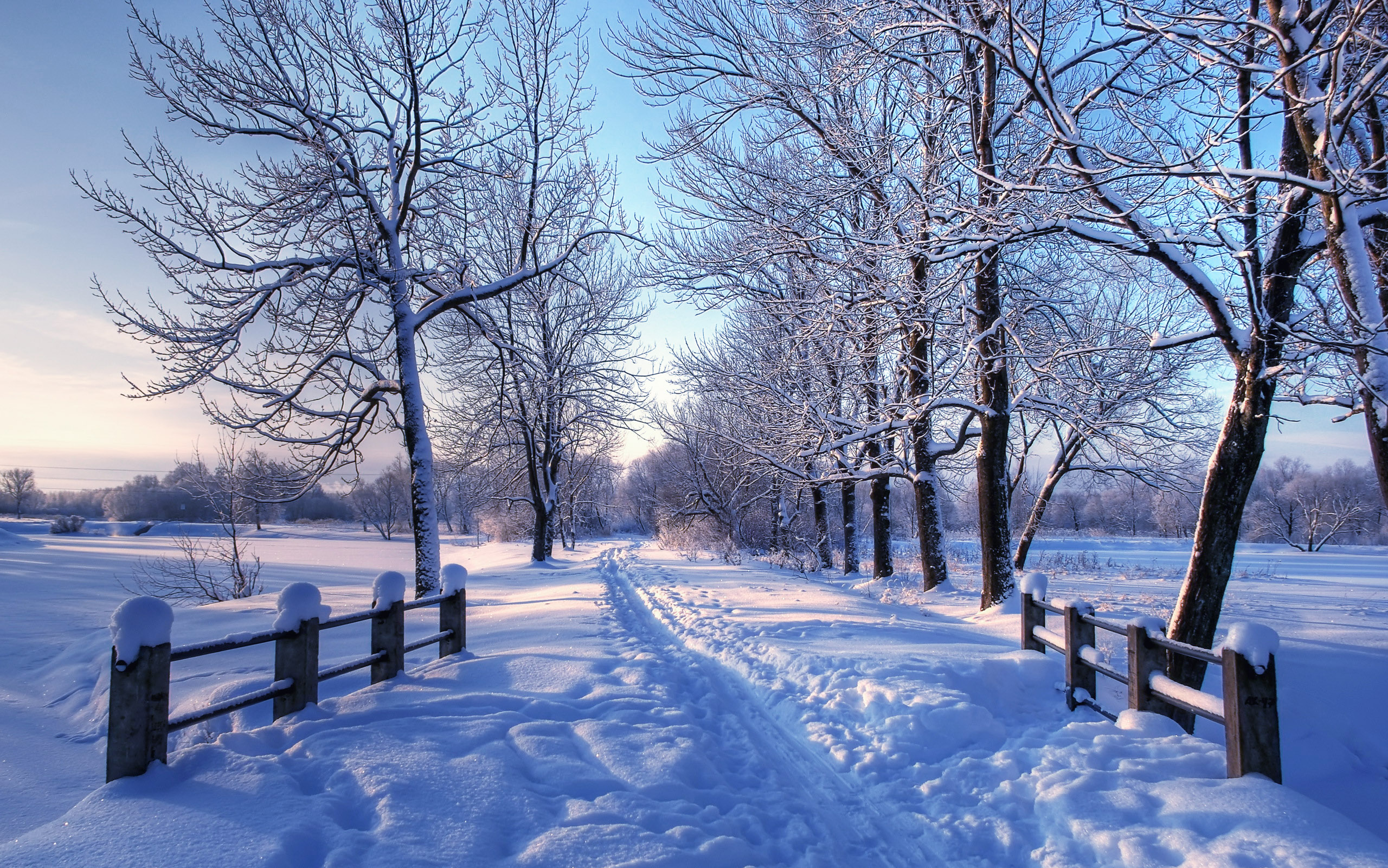 Winter On Mac Background Dual Screen Wallpapers Mac Wallpapers HD 2560x1600