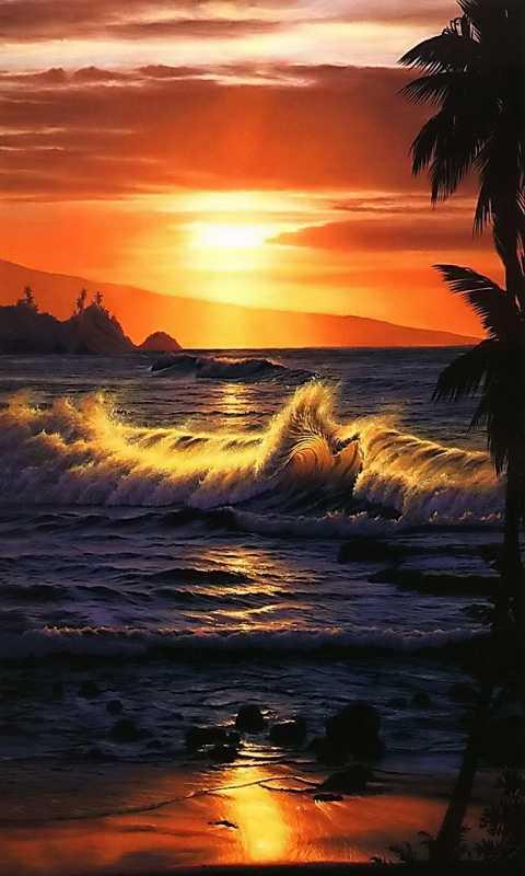 sunset 480x800 Screensaver wallpaper 480x800