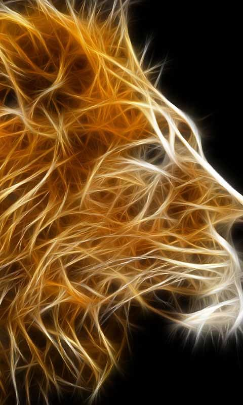 Cool Fire Lion Live Wallpaper Android Live Wallpaper download 480x800