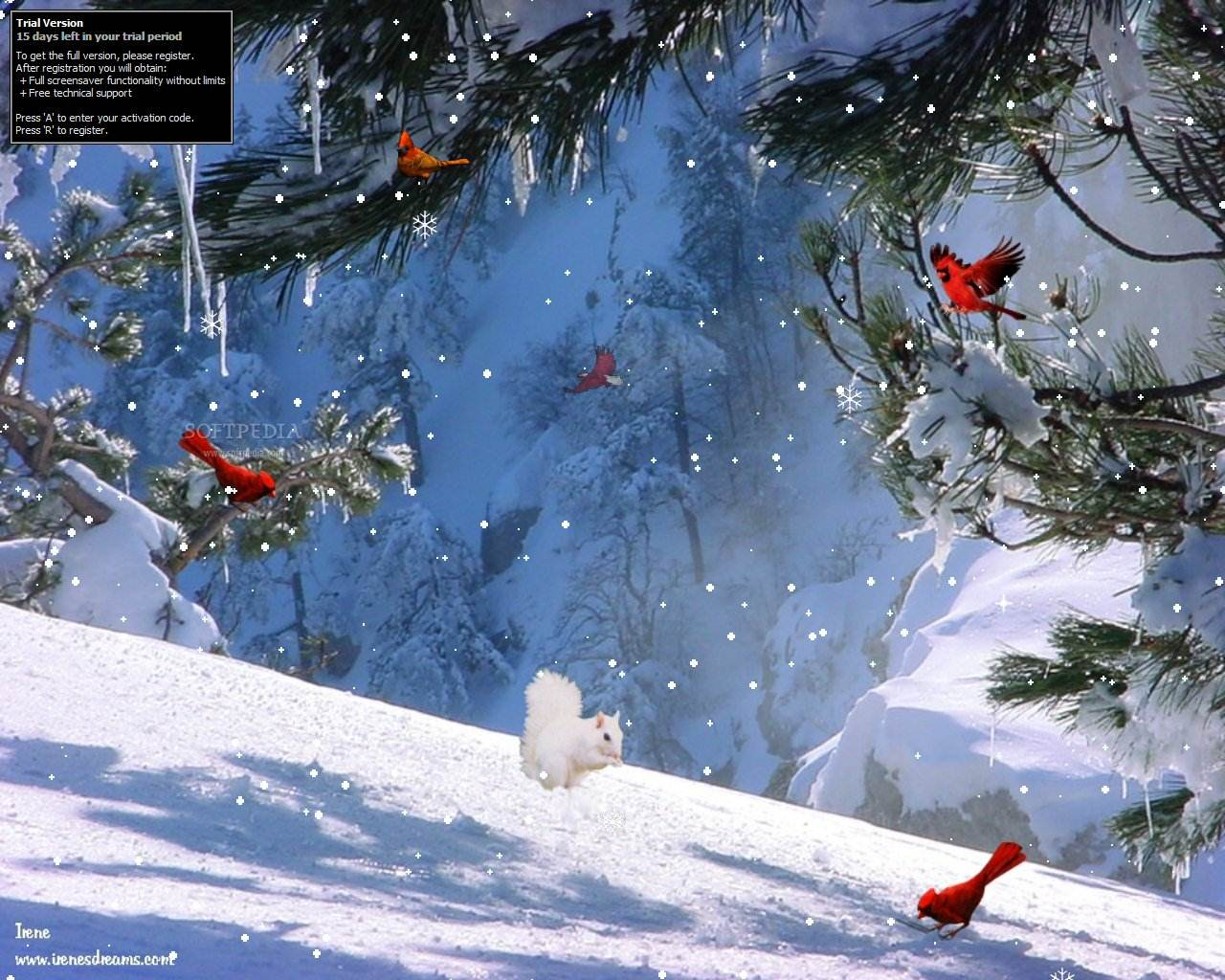 The Winter Thaw Screensaver displays the snow covered mountains 1280x1024