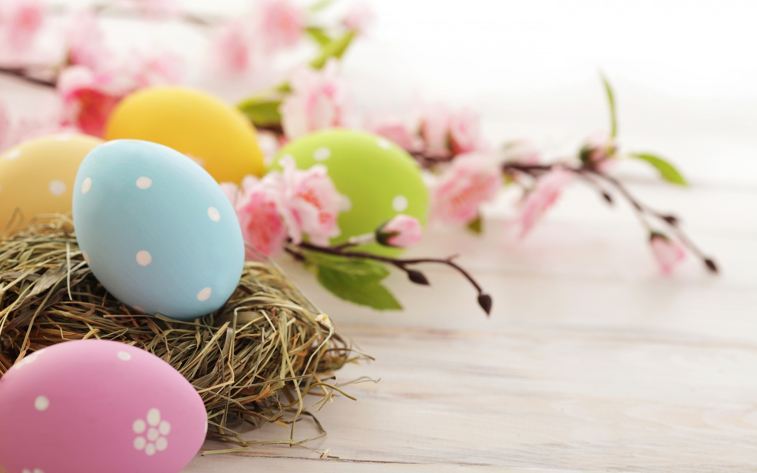 Easter Wallpaper Apple HD Wallpaper 2560x1600