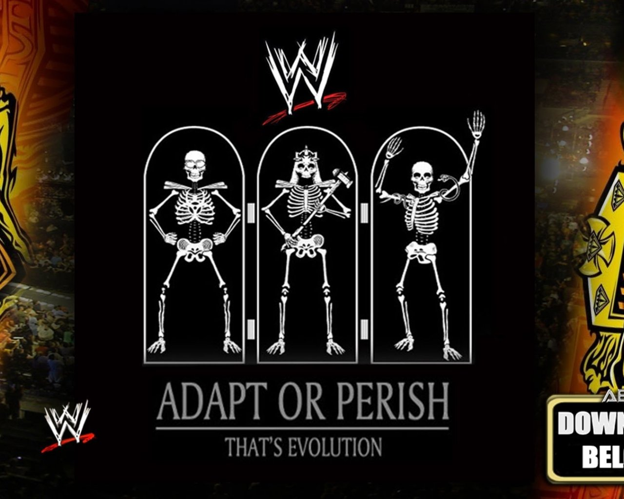 download WWE Evolution [Adapt Or Perish] Arena Effect [Full 1280x1024