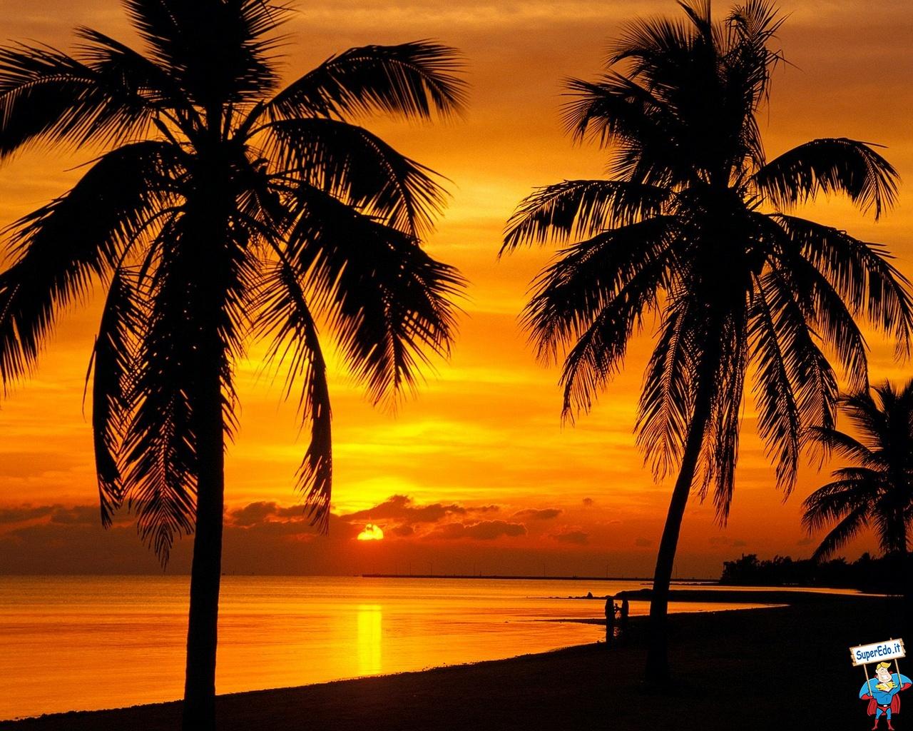 Free Download Sfondi Desktop Paradisi Tropicali 64 In Alta