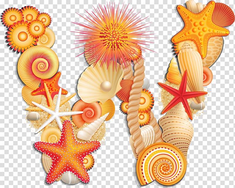 Seashell Letter Alphabet J W seashell transparent background PNG 800x640
