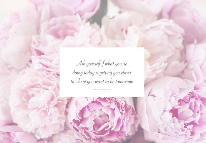 Free Download Desktop Wallpaper Pink Peonies F L O W E R S