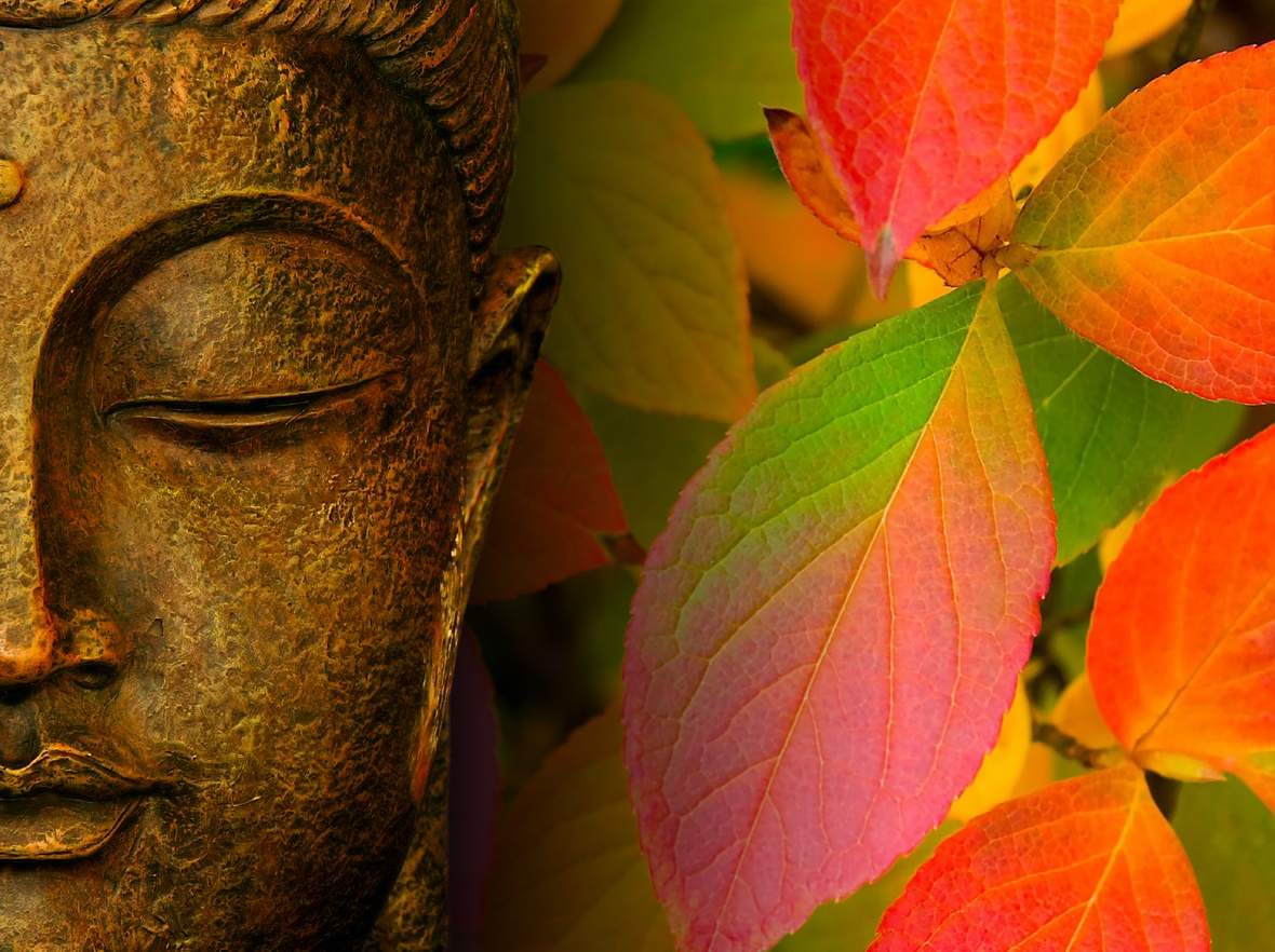 Wallpapers Of The Buddha Gautama Buddha Pictures 1180x882