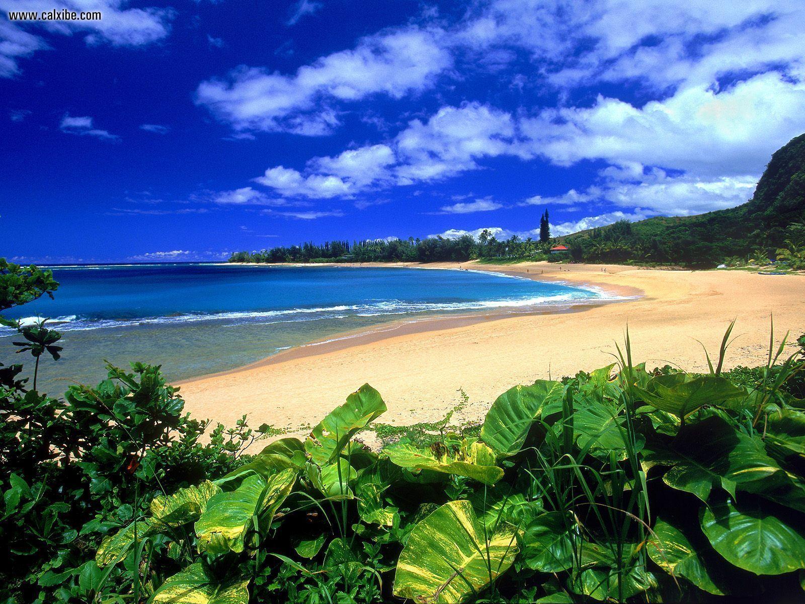 Nature Haena Beach Kauai Hawaii picture nr 17315 1600x1200