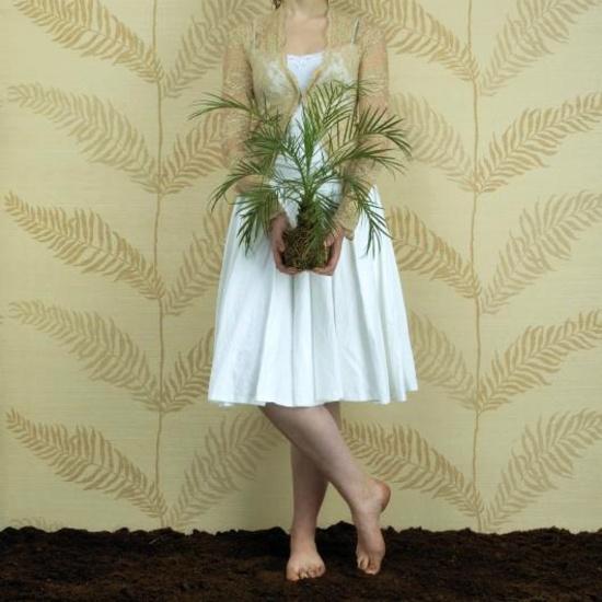 Foija Fern Wallpapers l Wallcoverings l Grasscloth l Eco Wallpaper 550x550